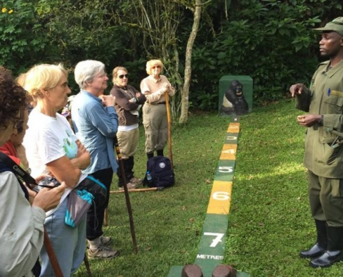 bwindi gorilla trekking briefing
